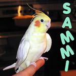 Sammi