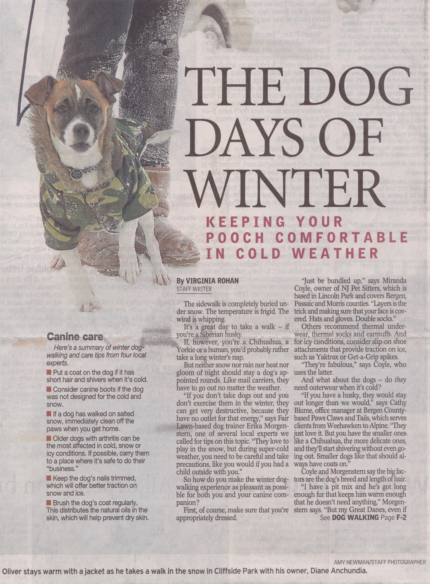 NJ Pet Sitters Daily Record Article Front Page